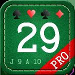 29 card game pro gameskip