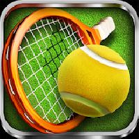 3d tennis gameskip
