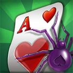 ae spider solitaire gameskip