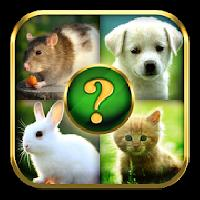 animals quiz gameskip