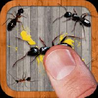 ant smasher free game gameskip