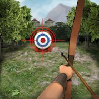 archery big match gameskip