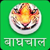 baghchal - tigers and goats gameskip