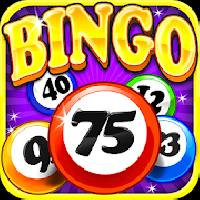 bingo craze gameskip