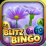 blitz bingo - may flowers gameskip