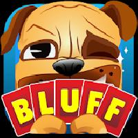 bluff party - card game gameskip