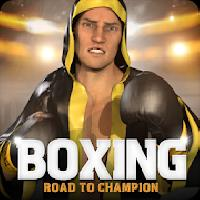 boxing - road to champion gameskip