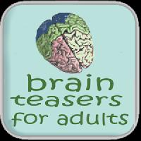 brain teasers for adults gameskip