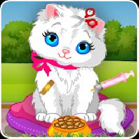 cat caring and makeover gameskip