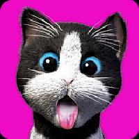 daily kitten : virtual cat pet gameskip