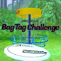 disc golf bag tag challenge gameskip