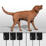 dog piano for kids woow gameskip