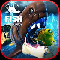 feed and grow : crazy fish gameskip