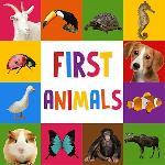 first words for baby: animals gameskip