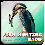 fish hunting bird