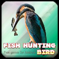 fish hunting bird gameskip