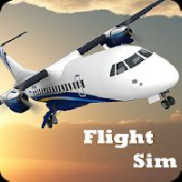 flight sim gameskip