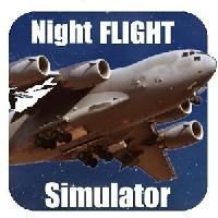 flight simulator night plane gameskip