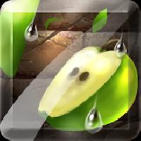 fruit slice gameskip
