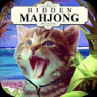 hidden mahjong: cats island gameskip