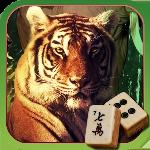 hidden mahjong: into the wild gameskip