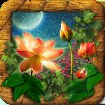 hidden objects mystery garden gameskip