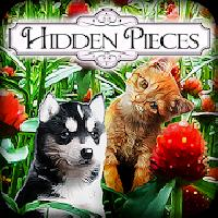 hidden pieces - spring babies gameskip