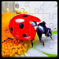 insect jigsaw puzzles game - for kids and adults gameskip