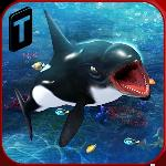 killer whale beach attack 3d