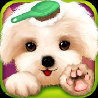 little pet salon gameskip