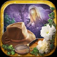 mystery hidden objects story gameskip