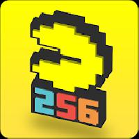 pac-man 256: endless maze gameskip