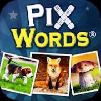 pix words