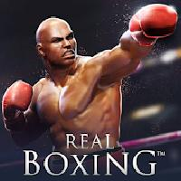 real boxing  ko fighting game gameskip
