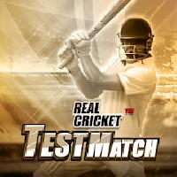 real cricket test match gameskip
