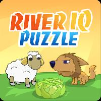 river iq puzzle gameskip