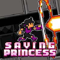 saving princess gameskip