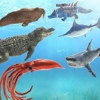 sea animal kingdom battle simulator: sea monster gameskip