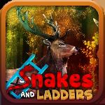 snake and ladder: fantasy forest