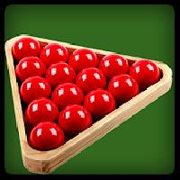 snooker professional 3d gameskip