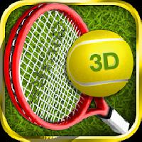 tennis champion 3d gameskip