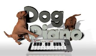 dog piano for kids woow