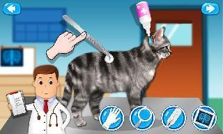 pet vet doctor animal hospital