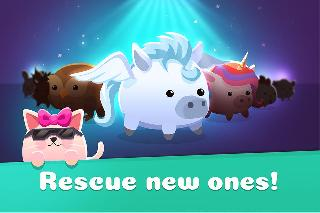 animal rescue - pet shop game