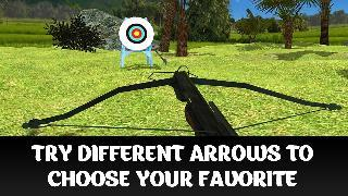 crossbow archery shooting 3d