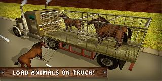 wild horse zoo transport truck