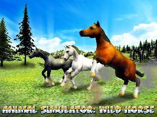 animal simulator: wild horse