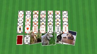 golf solitaire dogs