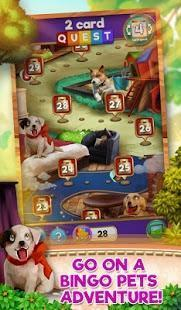 bingo pets party: dog days