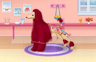 animal and pet hair salon